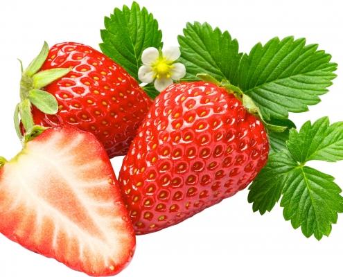Tehnologia de păstrare a căpșunelor şi a fructelor de arbuști fructiferi